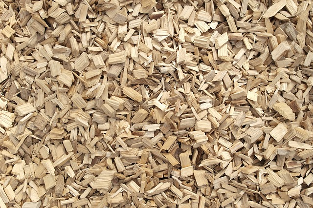 How to Use a Masterbuilt Electric Smoker with Woodchips